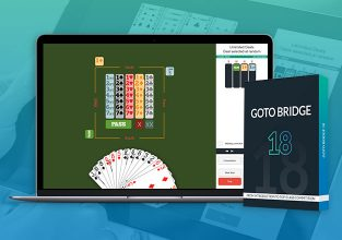 GOTO Bridge 18, coming soon to PC, Mac, tablets
